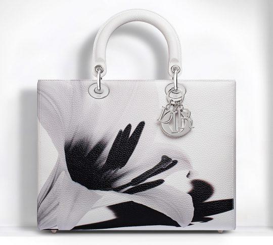 Dior Lady Dior Bags 13